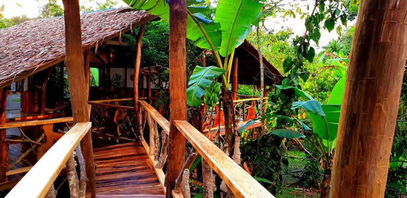 3 Bamboo Ecolodge
