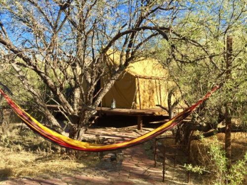 Raven's nest nature sanctuary