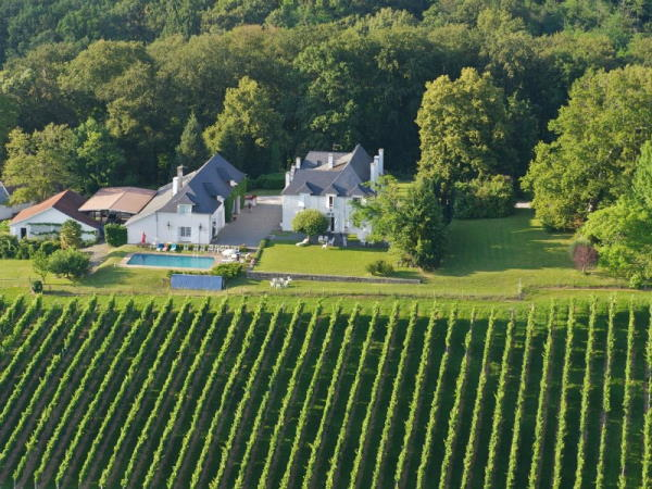 Vue du ciel les vignes et derrière la propriété avec les différents bâtiments aux murs blancs