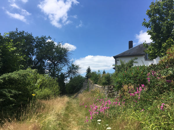 Bourgogne - La corne au Cerf. photo du jardin fleuri le long d'un vieux mur de pierre ou on fon don devine la maison aux murs blanc et toit ardoise et un escalier pour y acceder