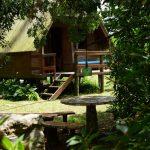 Photo prise à l'ombre d'un arbre à côté d'une table de pique nique en pierre et derrière on voit une des cabanas en bois avec quelques marches pour y acceder
