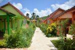 Martinique - Hotel bambou. Allée de l'hôtel avec de chaque côté des bungalow en bois coloré vert ou orange. Les allées sont également bordées de végétation