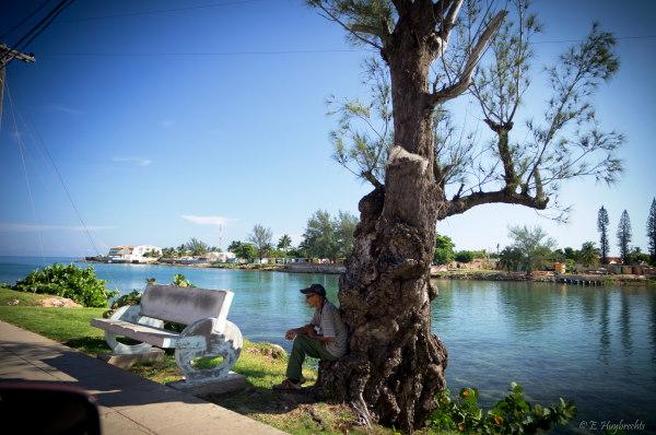 jolie vue sur un plan d'eau, un homme assis au pied d'un arbre