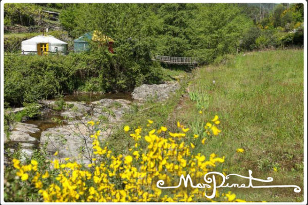 Occitania - Mas Pinet. Photo taken at the edge of the river, in the foreground of the jeunets in flower and in the background one sees the yurts