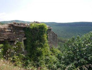 Ruine en pierre envahit par les herbes, la nature reprend ses droits