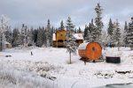 Mount Logan Lodge - Photo du jardin et des sapins autour recouvert de neige. Au premier plan la