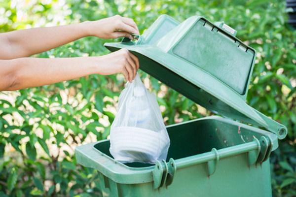 l'écotourisme, un enjeu essentiel : poubelle verte de recyclage