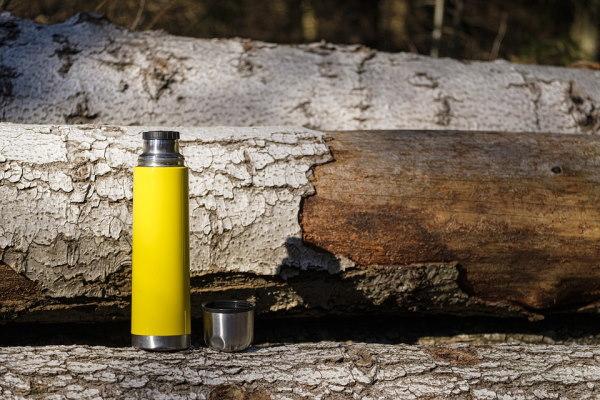 gourde jaune posée sur un tronc d'arbre