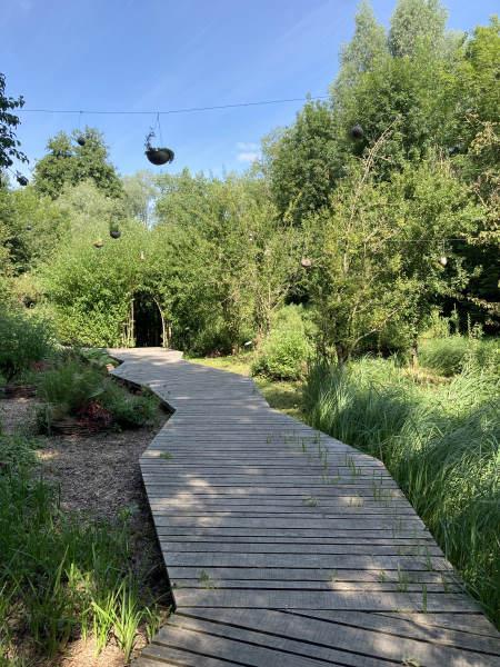 hortillonnages - Chemin de promenade en bois bucolique
