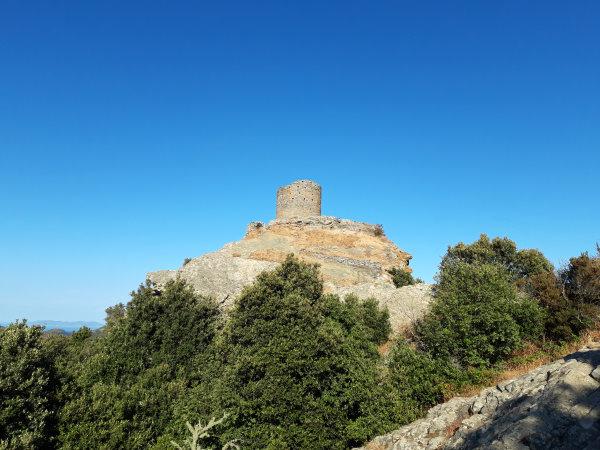 Photo en contre plongée avec au sommet une tour génoise et sur les flancs de la colline des arbustes