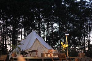 Tente de glamping au lieu d'une forêt posé sur une estrade en bois qui sert aussi de terrasse et éclairé avec un lampadaire