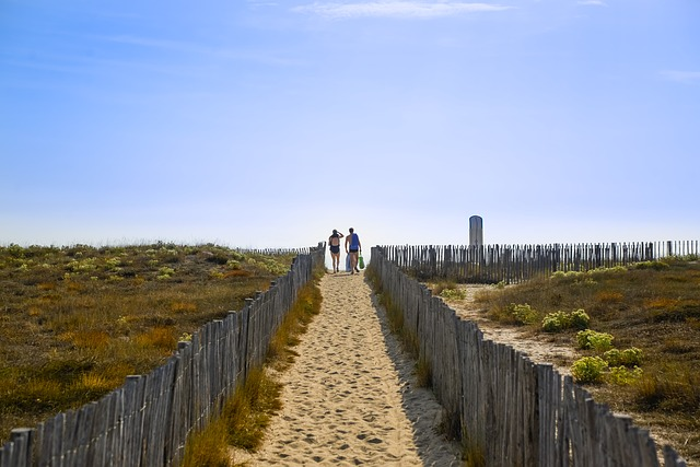 ecological sea holidays - dunes with a path marked out by wooden fences with people in swimming costumes going to the beach at the end