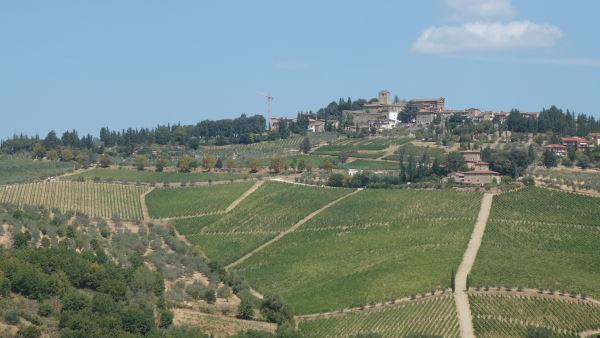 Escapade à Florence - photo d'un paysage typique de la région du Chianti avec des viagnes à flanc de colline, des oliviers et un village perché