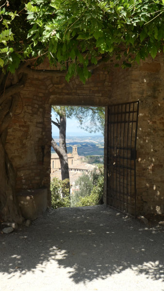 Road trip en toscane - Photo prise depuis la citadelle à travers une porte ouverte on aperçoit un arbre, derrière la ville et encore derrière la campagne toscane